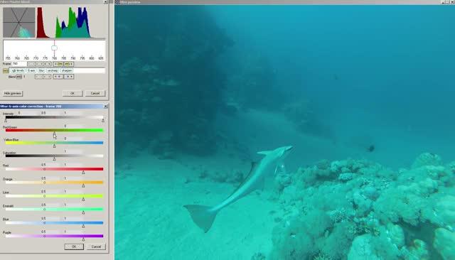 Watch and share Underwater Enhancement (-20m) GIFs on Gfycat