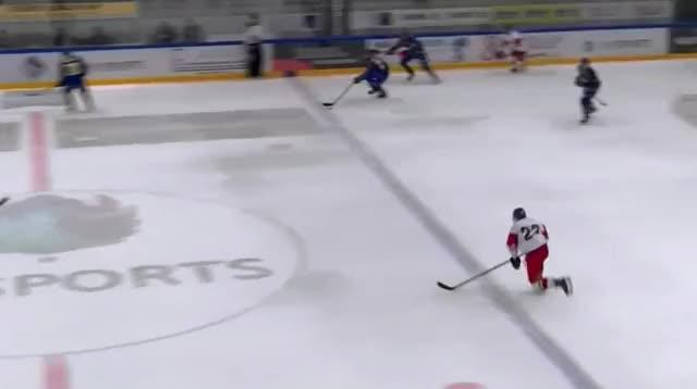 Watch Zápas (195) GIF on Gfycat. Discover more hockey GIFs on Gfycat