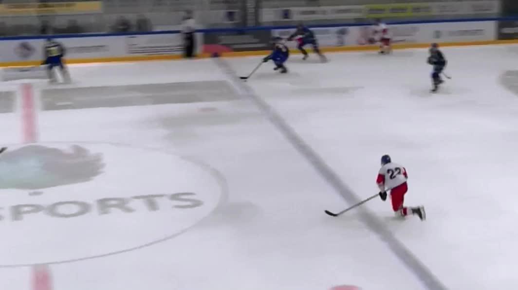 hockey, Zápas (195) GIFs