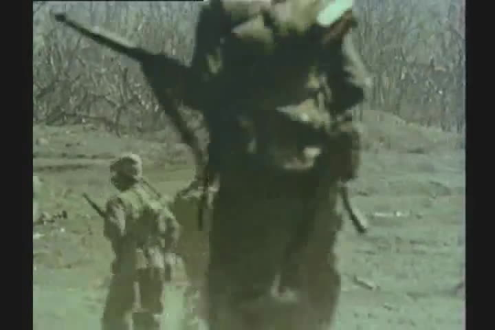 cow, prabhupada, protect, WW II : RARE COLOR FILM : IWO JIMA : US FLAG ON MT SURIBACHI GIFs