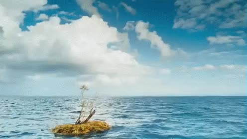 Watch and share The Sea GIFs on Gfycat