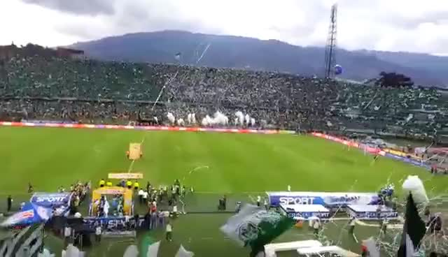 Watch and share Millonarios GIFs and Nacional GIFs on Gfycat