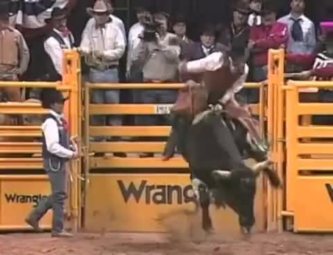 Watch and share Bull Rider GIFs on Gfycat
