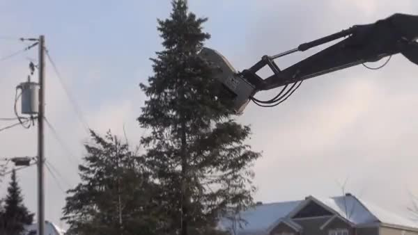 Watch Excavation Mulcher eats a 25 foot tree from the top down in 10 seconds (reddit) GIF on Gfycat. Discover more gfycats GIFs on Gfycat