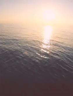 Watch and share Reflection GIFs and Beautiful GIFs on Gfycat