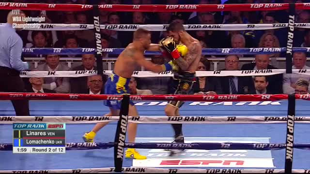 Watch Linares Lomachenko GIF on Gfycat. Discover more related GIFs on Gfycat