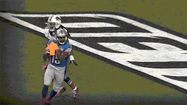 Watch Golden Tate GIF on Gfycat. Discover more detroitlions, downvotegifs GIFs on Gfycat