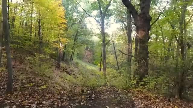 Watch Firefly Hollow Open rockwell hole 6 GIF by Benn Wineka UWDG (@bennwineka) on Gfycat. Discover more dgpt, dgwt, disc, disc golf, mcbeast, nate sexton, paul mcbeth, pdga, simon lizotte, tournament GIFs on Gfycat