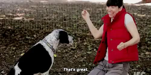 Watch and share Carrie Brownstein GIFs on Gfycat