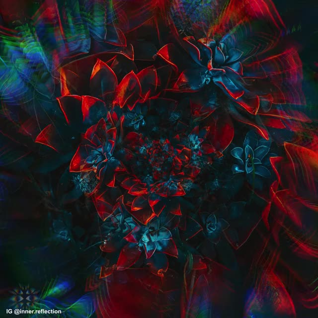 Watch and share Psychedelic Visuals GIFs and Acid Trip Visuals GIFs by Symmetric Vision on Gfycat