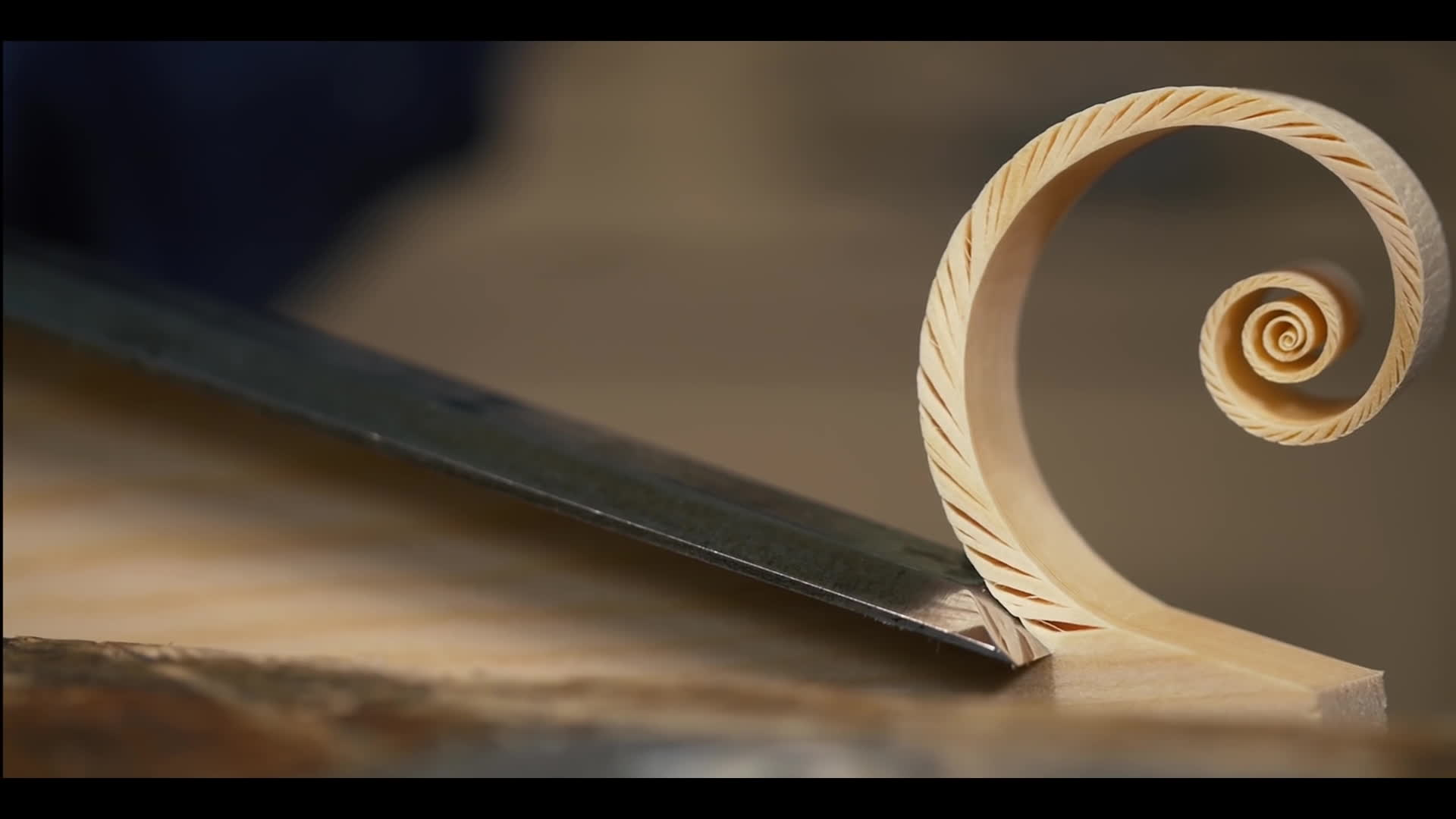 hand tools, oddlysatisfying, woodworking, Fibonacci Spiral Shaving - with Paul Sellers GIFs