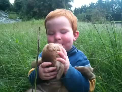 Watch Baby kisses for baby lamb GIF by @pyriel on Gfycat. Discover more Eyebleach GIFs on Gfycat