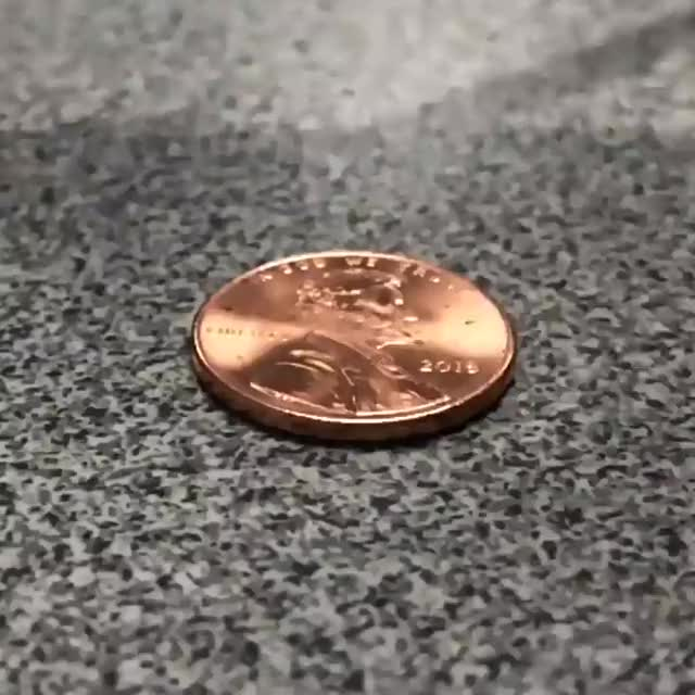 Watch and share Penny GIFs by notmyproblem on Gfycat