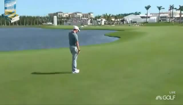 Watch and share Rory McIlroy Has A Cow, Throws Club In Lake GIFs on Gfycat