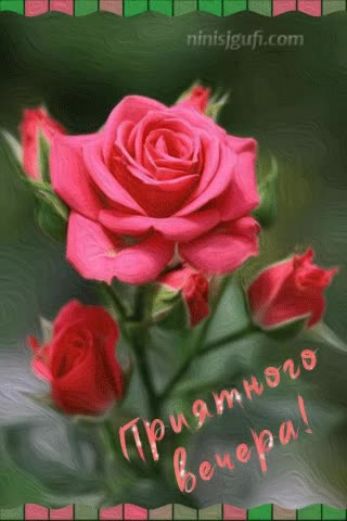 Watch and share Приятного Вечера GIFs by ninisjgufi on Gfycat