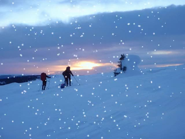 Watch and share Let It Snow In Finland! GIFs on Gfycat