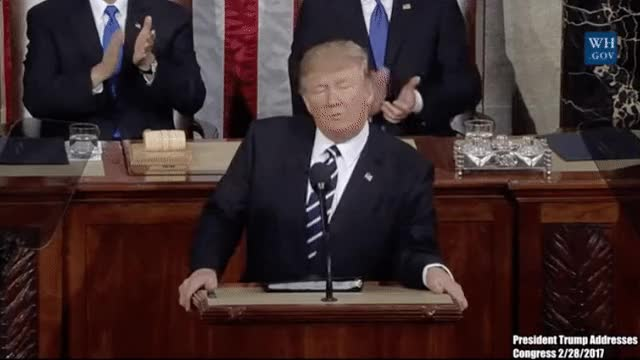 Watch Trump GIF on Gfycat. Discover more donald trump GIFs on Gfycat