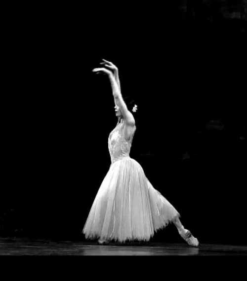 Watch and share Natalia Osipova As Giselle (x) GIFs on Gfycat