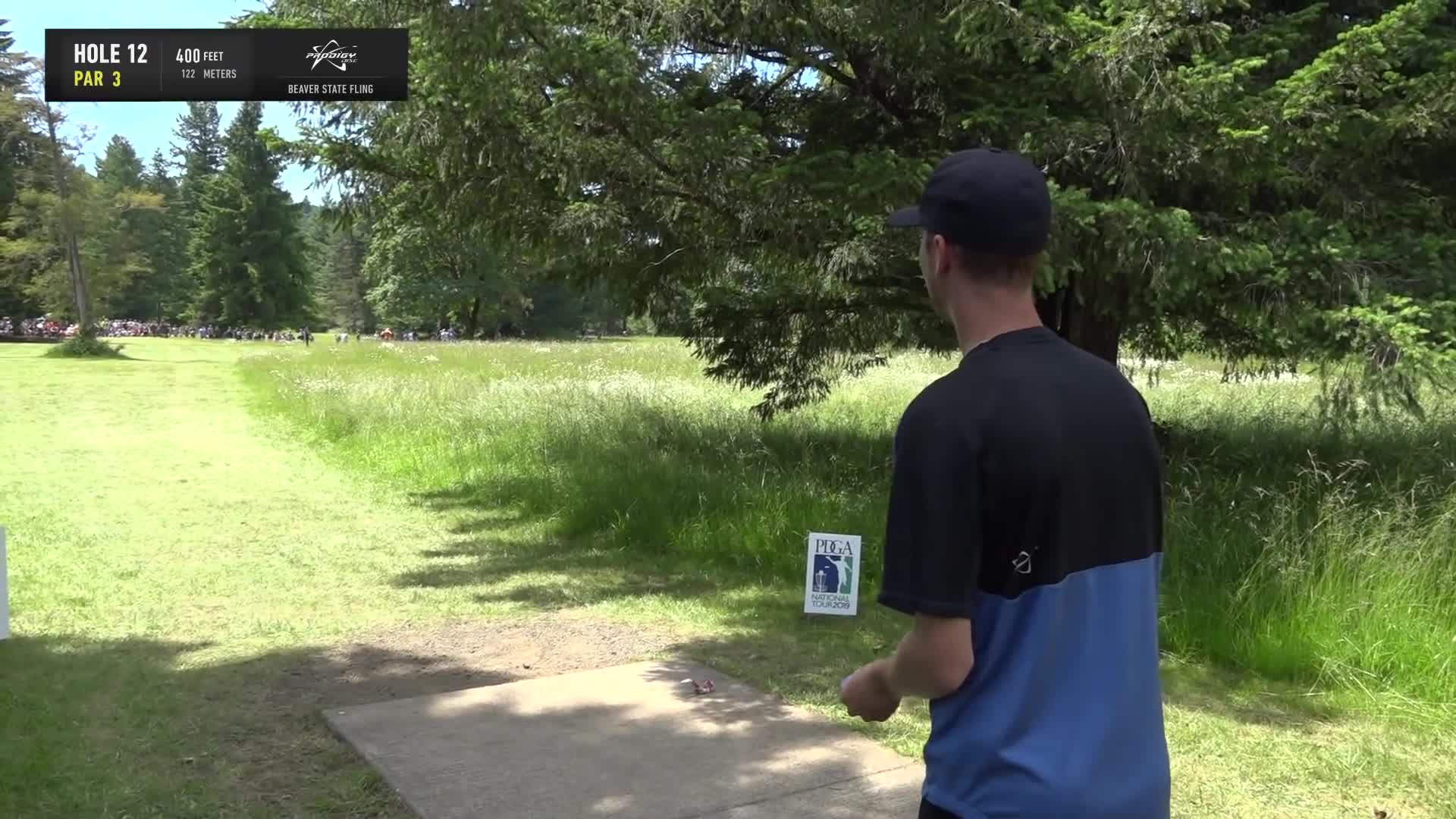 ace, bsf, dela, delaveaga, dgpt, dgwt, disc, disc golf, frolf, hole in one, masters cup, mcbeast, milo, nate sexton, nt, paul mcbeth, pdga, simon lizotte, tournament, worlds, 2019 Beaver State Fling - Final Round, Part 2 - Seppo Paju hole 12 drive GIFs