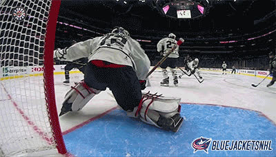 Columbus Blue Jackets GIFs