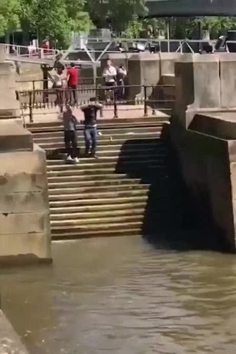 Watch and share Funny GIFs by butabacu on Gfycat