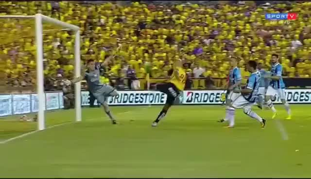 Watch and share IMPRESSIONANTE ESSA DEFESA MILAGROSA DO GOLEIRO MARCELO GROHE GIFs on Gfycat