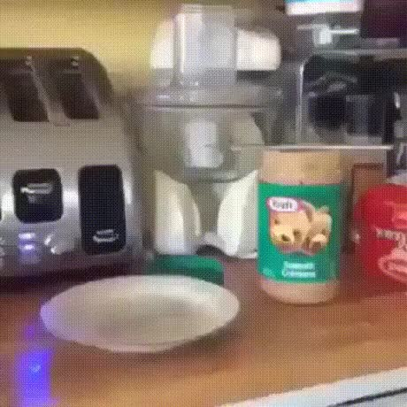 Watch and share First World Breakfast Problems GIFs on Gfycat