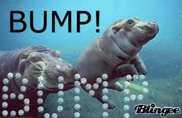 Watch and share Hippo BUMP GIFs on Gfycat