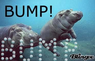 Hippo BUMP GIFs