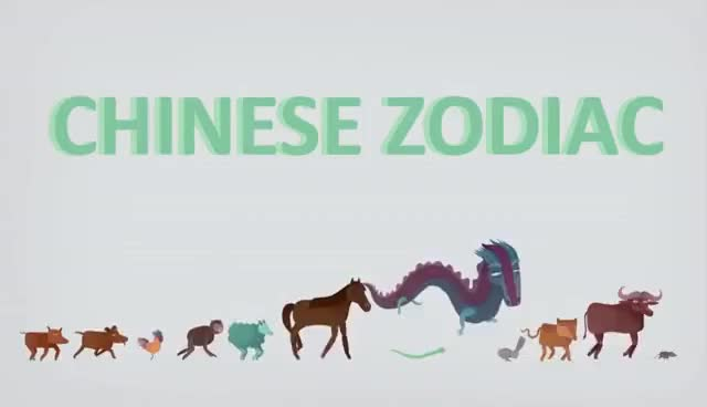 Watch and share The Myth Behind The Chinese Zodiac - Megan Campisi And Pen-Pen Chen GIFs on Gfycat