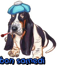 Watch and share Bon Samedi - Chien - Gif Animé - Gratuit animated stickers on Gfycat