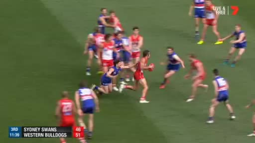 Watch and share Western Bulldogs GIFs and Grand Final GIFs by abcnews_australia on Gfycat