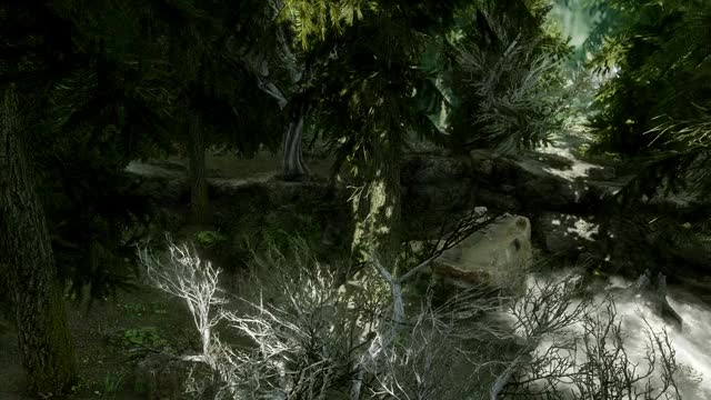 Watch Laggy Mess GIF by Vex (@vexore) on Gfycat. Discover more Skyrim, gaming, graphics, mods GIFs on Gfycat