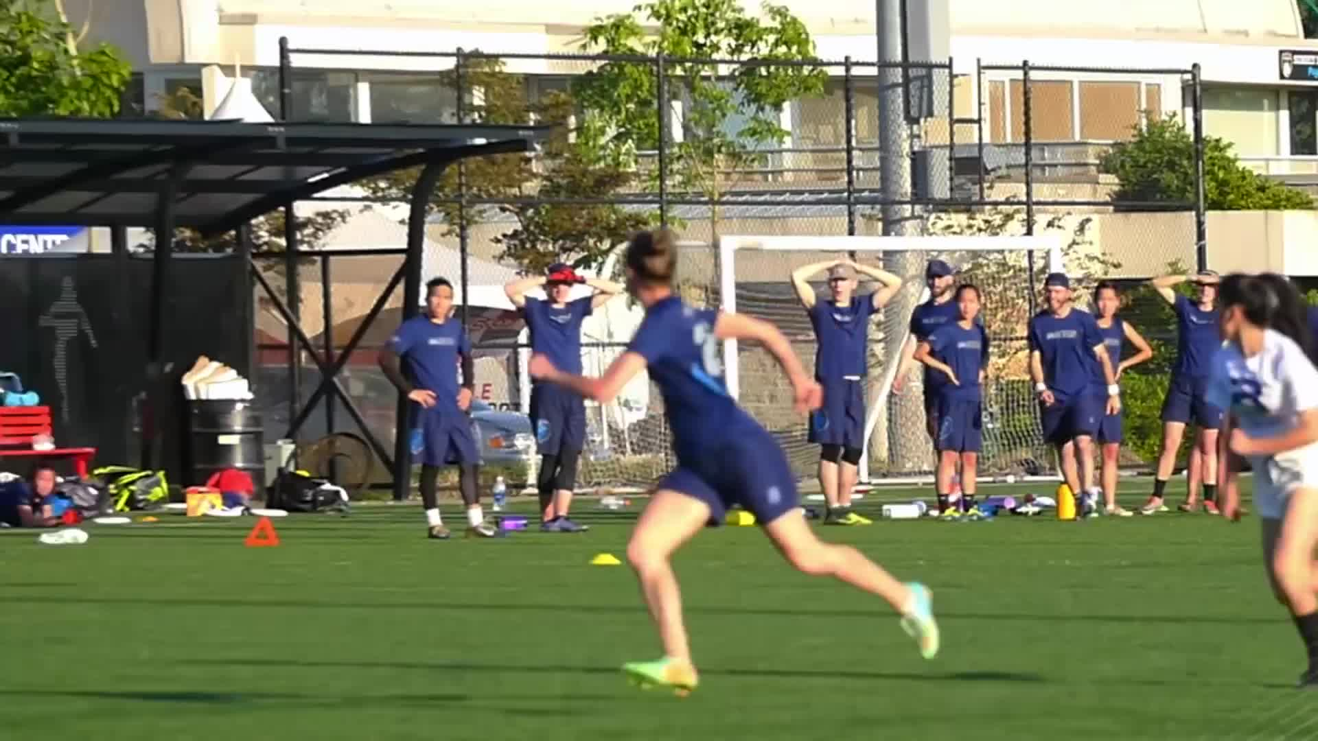 american ultimate disc league, audl, frisbee, ultimate, ultimate frisbee, Alex Fussell Huge Layout Goal GIFs