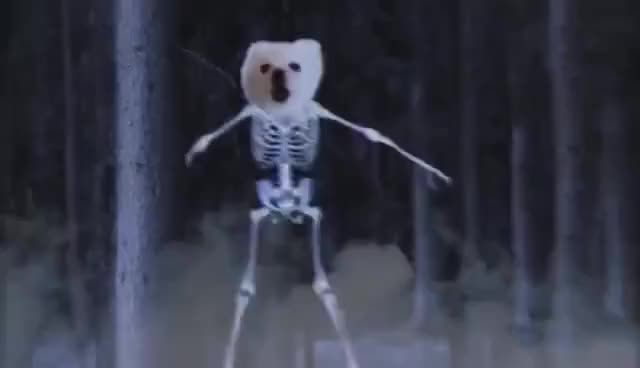Watch and share Spooky Scary Borks GIFs on Gfycat