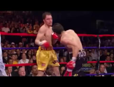 Watch Margarito knocks out Cintron II GIF on Gfycat. Discover more related GIFs on Gfycat