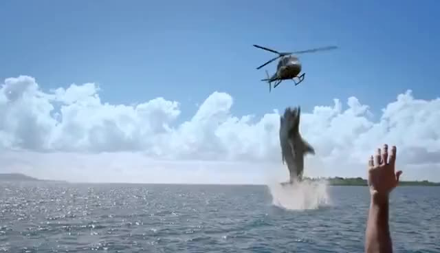 Watch and share 5 HEADED SHARK ATTACK TRAILER GIFs on Gfycat