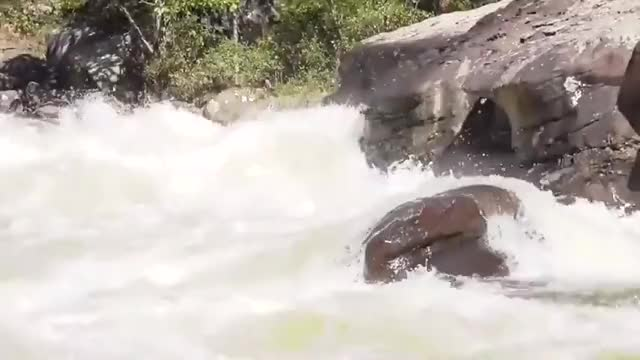 Watch and share Whitewater GIFs by wvunicycle on Gfycat
