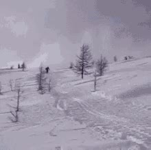 Watch and share Fail Skiing GIFs on Gfycat