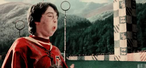 Watch and share Nimbus 2000 GIFs on Gfycat