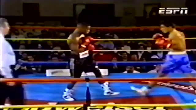 Watch counter left hook vs ayala GIF by @walleggy on Gfycat. Discover more related GIFs on Gfycat