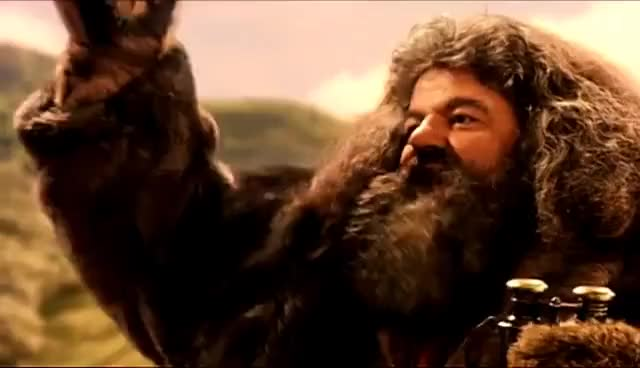 Watch and share Hagrid GIFs and Hint GIFs on Gfycat
