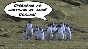 Watch and share Jaca GIFs on Gfycat
