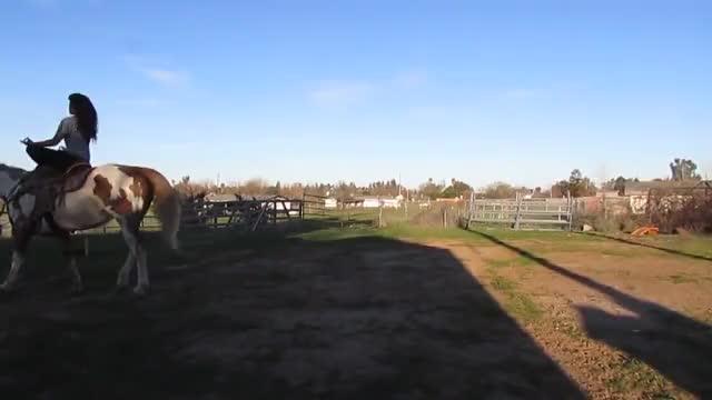 Watch and share Galloping Bareback GIFs and Horseback Riding GIFs on Gfycat
