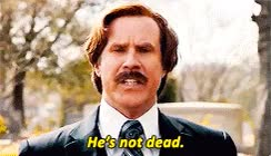 Watch and share Anchorman Brick GIFs on Gfycat