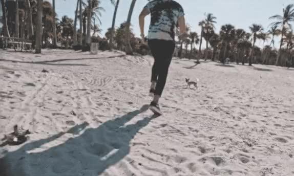 Watch and share Sebastian Yatra GIFs and Chihuahua GIFs by rj on Gfycat