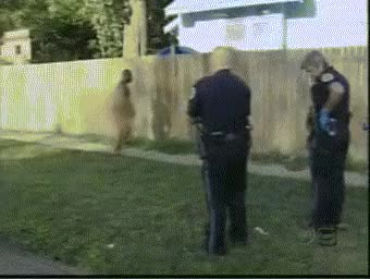 Watch and share Fuck You Cops And Especially Fuck This Fence In Particular. : IdiotsFightingThings GIFs on Gfycat
