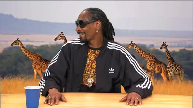 Watch this snoop dogg GIF on Gfycat. Discover more all tags, animals, baboons, clip, comedian, comedic, funny, highlight, humor, improv, monkeys, music, nature, sketch, snoop dogg, stand-up, variety GIFs on Gfycat