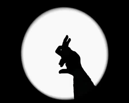 Watch and share Shadow GIFs on Gfycat