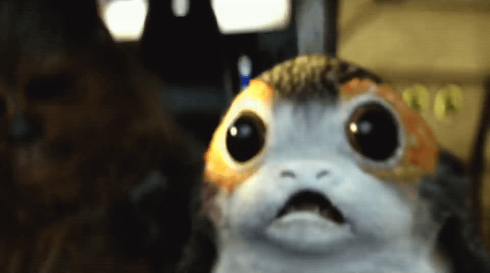 adorable, awww, cute, omg, porg, star wars, the last jedi, Porg - Star Wars The Last Jedi GIFs